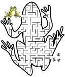 Лягушачий лабиринт