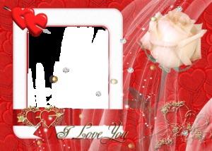 14 февраля - С белой розой